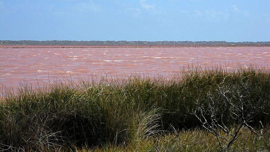 Hutt-Lagoon-Golu-Avustralya